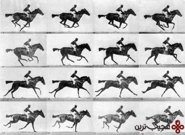 اسب-متحرک