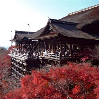 عکس-کاور-معبد-کیومیزو