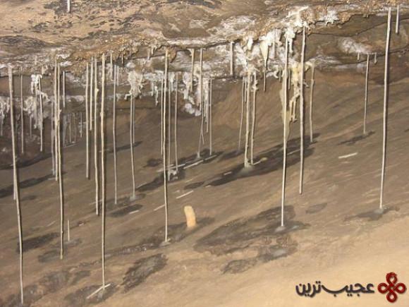 غار-هولوک