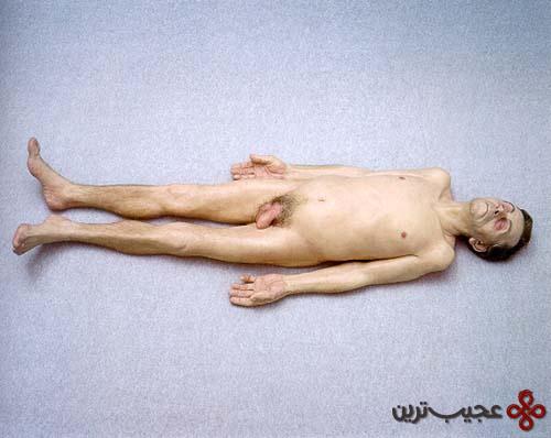 مجسمه46