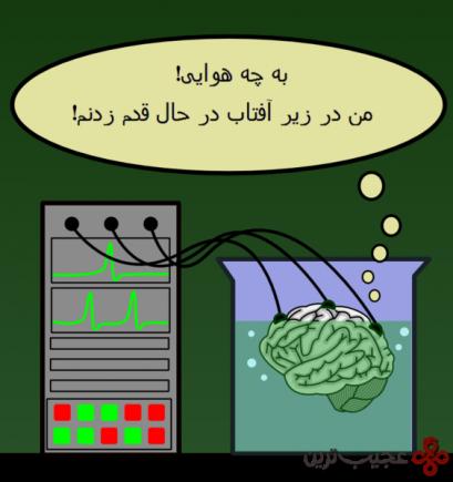مغز-خمره