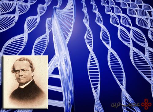 وجود ژن ها