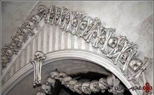 Bone9
