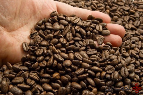 Coffee Museum 1
