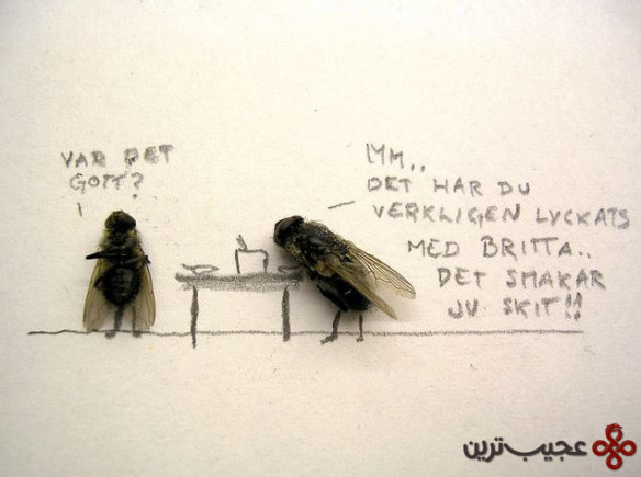 dead_flies_art_08
