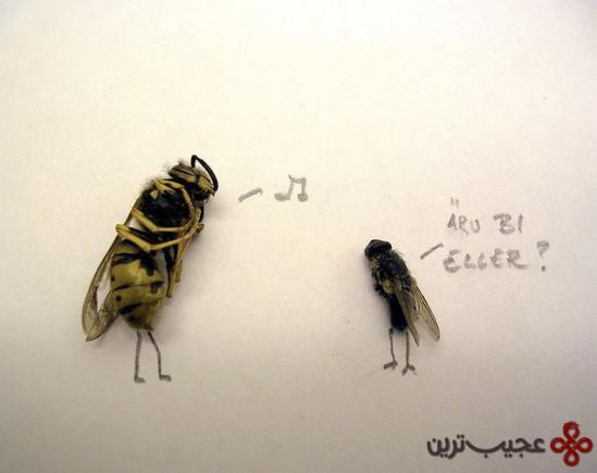 dead_flies_art_09