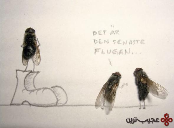 dead_flies_art_10