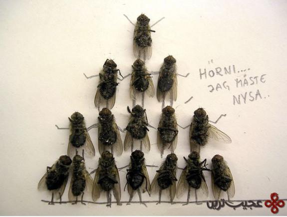 dead_flies_art_11