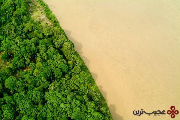 new-7-wonders-nature-amazon-river-basin