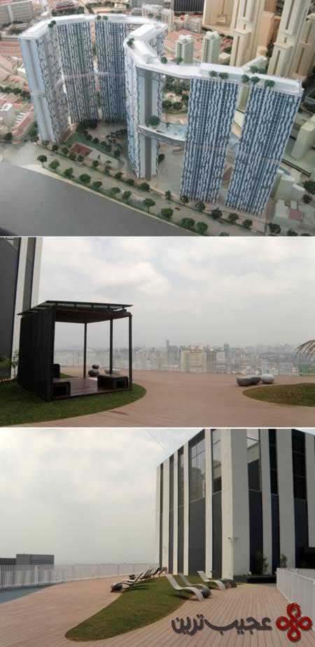 rooftop_9-garden