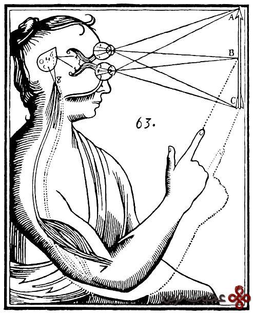 ارتباط ذهن و بدن