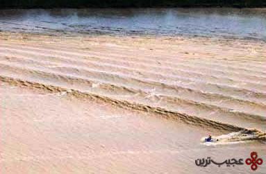 بزرگترین موج (1)
