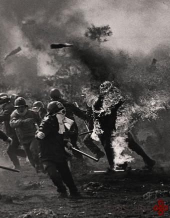بهترین عکس های خبری نیم قرن گذشته (23)