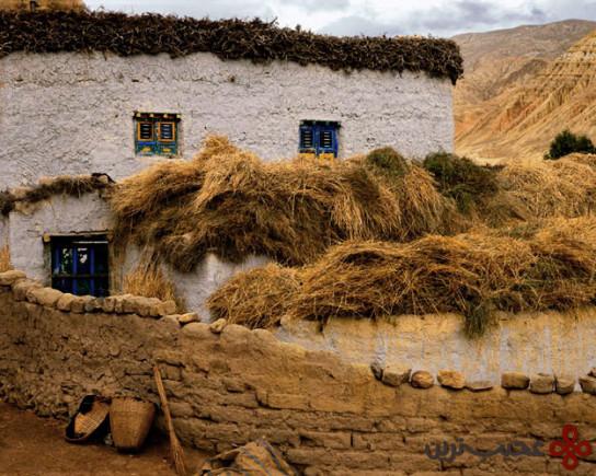 تبت (4)