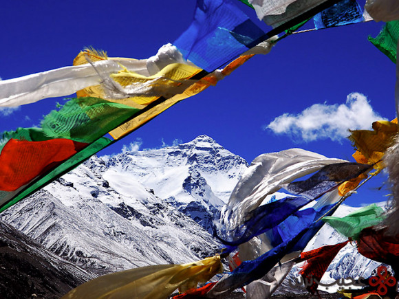 تبت (6)