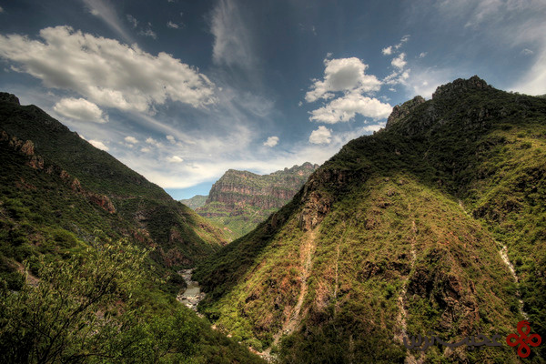 دره کوپر (1)