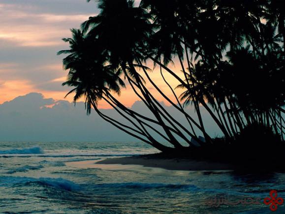 سریلانکا (6)