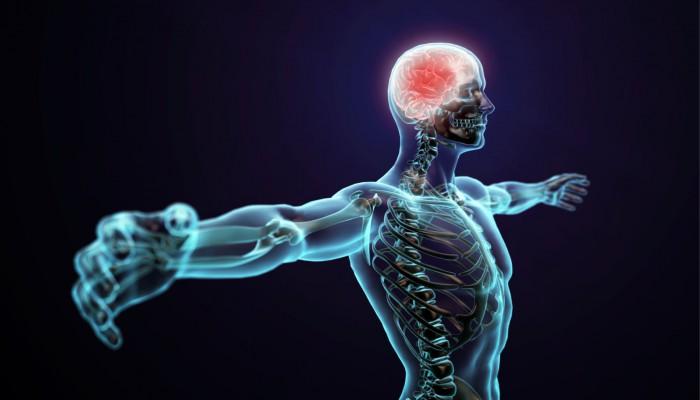 عکس کاور بدن انسان