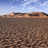 عکس کاور صحرای بزرگ آفریقا