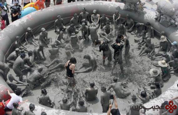 فستیوال باتلاق