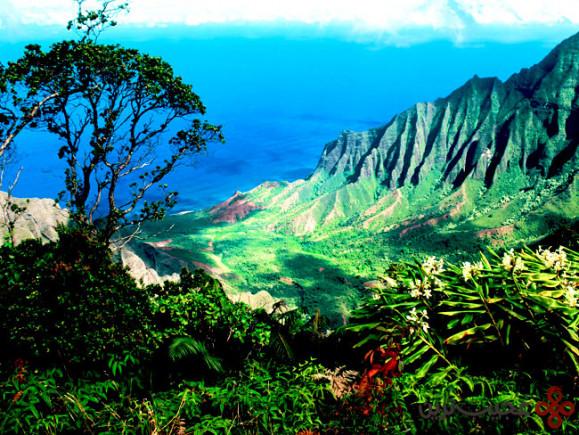 هاوایی (3)
