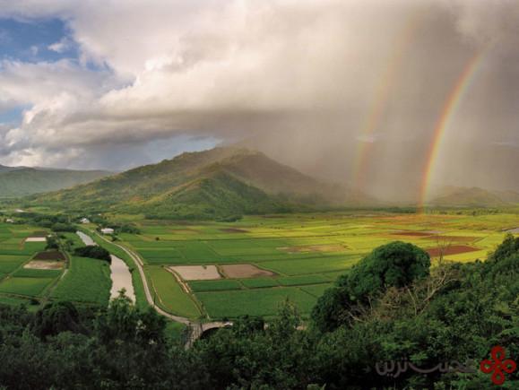 هاوایی (4)