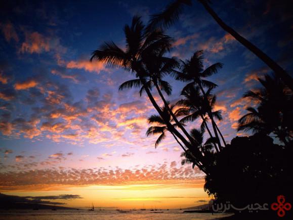 هاوایی (5)