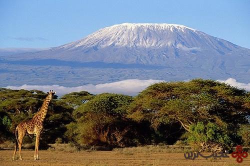volcanic mountain in tanzania