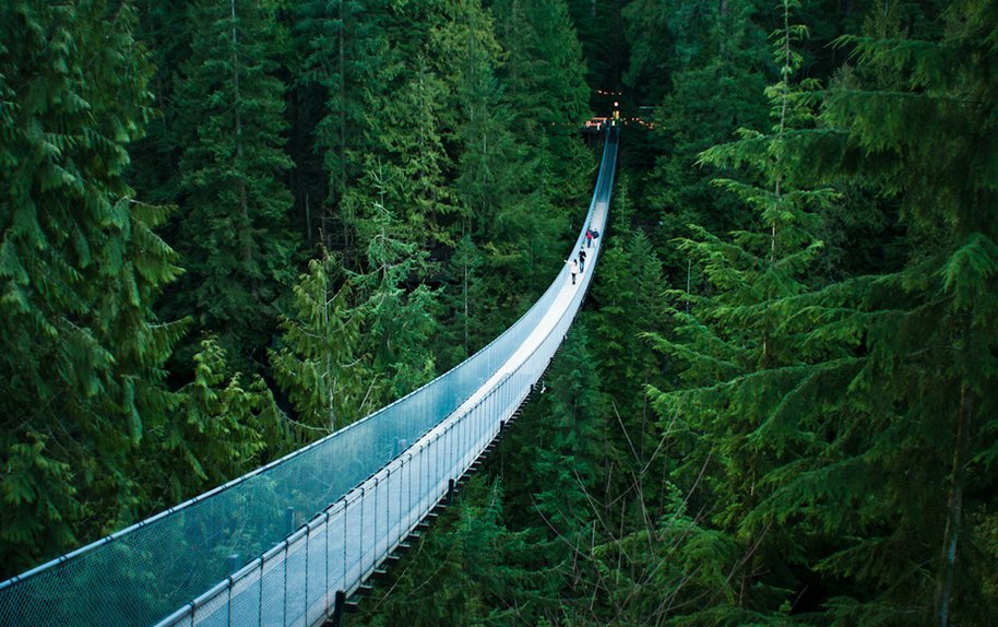 cover capilano suspension bridge