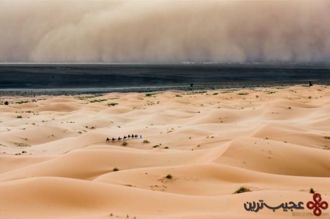 morocco peter vruggink