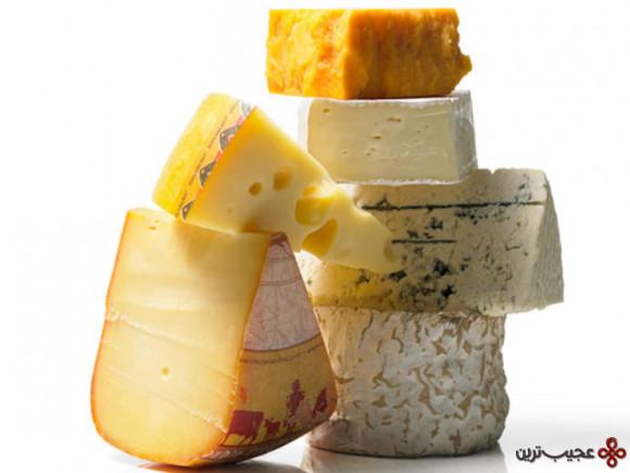 آدامس پنیر دندان