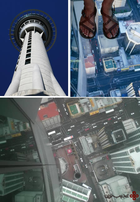 برج آسمان اوکلند