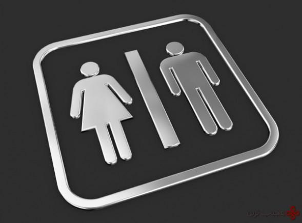 توسعه دو جنس