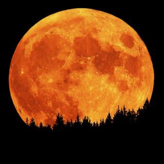 عکس کاور ماه