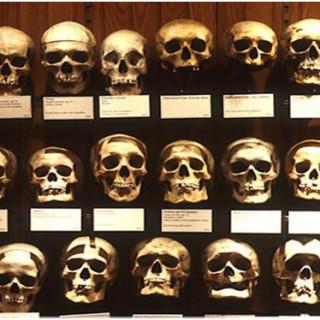 عکس کاور موزه موتر تاریخ پزشکی