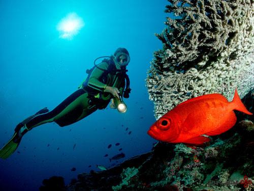 08.underwater