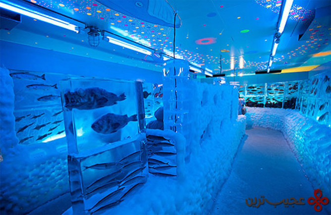 ice aquarium in kesennuma (1)