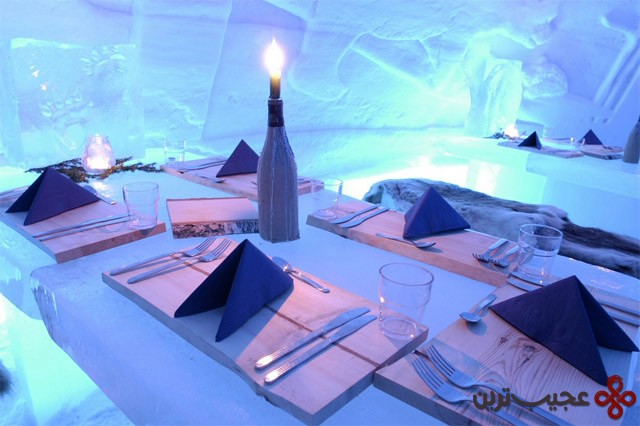 luxury igloo village in middle of the forest (1)