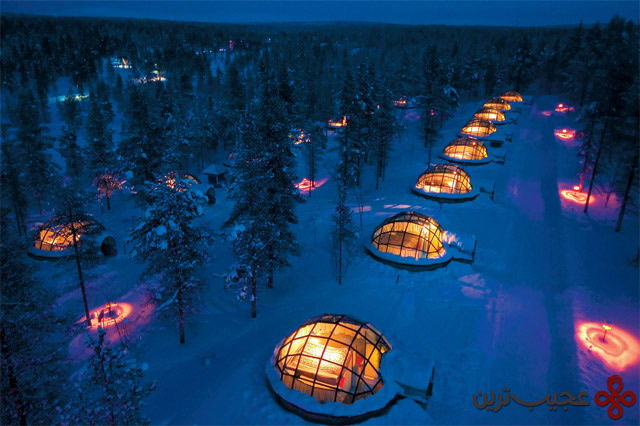 luxury igloo village in middle of the forest (2)