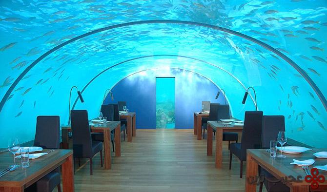 underwater restaurant (1)