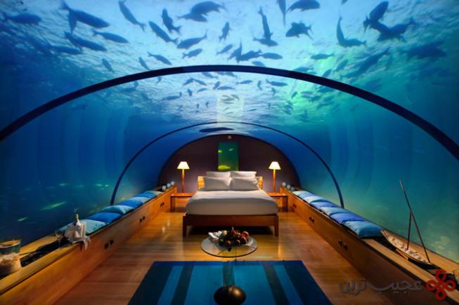 underwater restaurant (2)