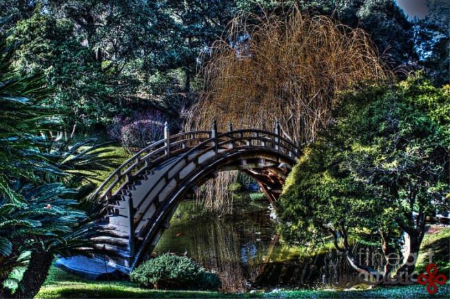 باغ ژاپنی اندرسون ۱