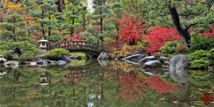 باغ ژاپنی اندرسون ۳