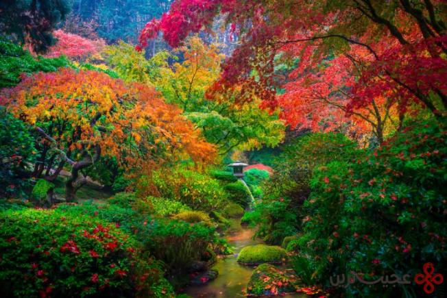 باغ ژاپنی پرتلند ۴