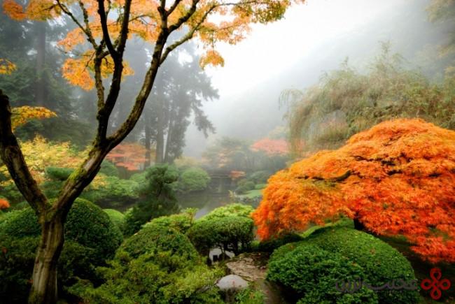 باغ ژاپنی پرتلند ۵