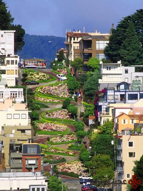 خیابان لمبارد در سانفرانسیکو، کالیفرنیا