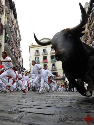 دویدن با گاوهای خشمگین در پامپلونا، اسپانیا