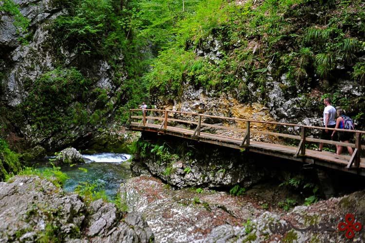 رودخانه رادونا (radovna)، بلد جرج، اسلوونی۱