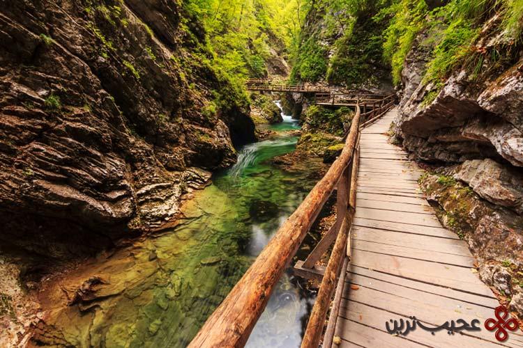 رودخانه رادونا (radovna)، بلد جرج، اسلوونی