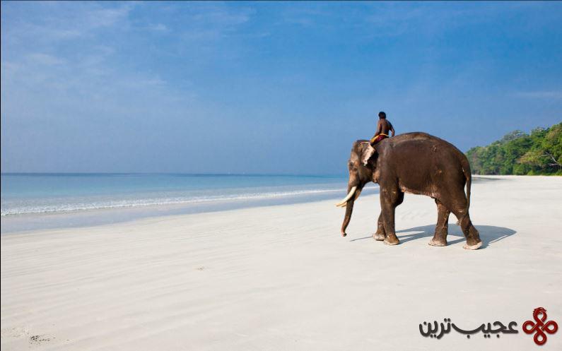 ساحل رادهاناگار، جزیره هولاک، جزایر آندامان